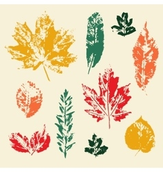 Colorful leaves prints set vector