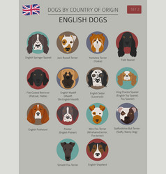 Dogs by country of origin english dog breeds vector