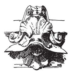 dolphin head is designed during the italian vector image
