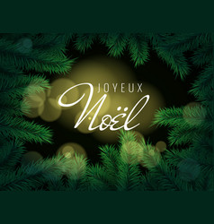 french text joyeux noel merry christmas greeting vector image