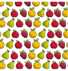 Organic fruits background icon vector