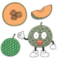 set of melon vector image