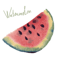 Watercolor of watermelon vector