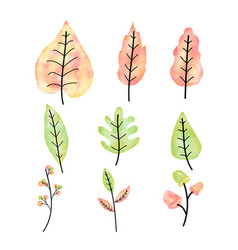 autumn leaves set watercolor vector image