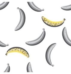 Banana fruit seamless pattern vector