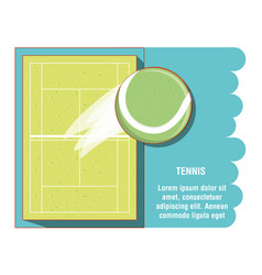 Courts of tennis sport with ball vector