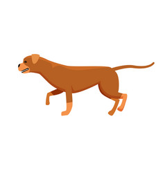 Dog brown color profile view vector