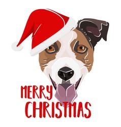 Jack russell terrier merry christmas vector