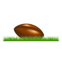 retro rugby ball lying in grass vector image