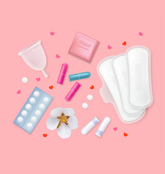 set female menstrual cycle hygiene products vector image