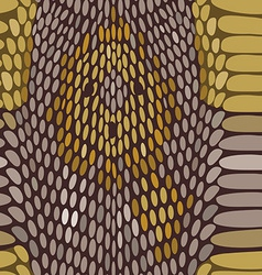 Snake python skin texture Seamless pattern vector image