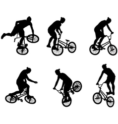 stunt bicyclists vector image