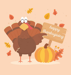 turkey with pumpkin and board happy thanksgiving vector image