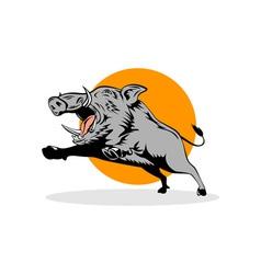 Wild Pig Boar Jumping vector