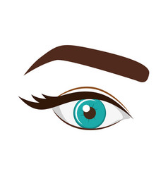 Woman blue eye with eyebrow vector