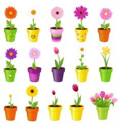 flowers in pots vector image vector image