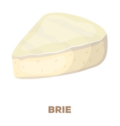 briedifferent kinds of cheese single icon in vector image