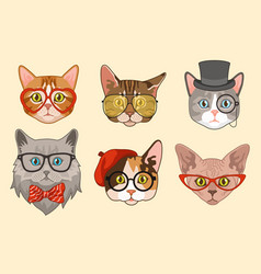 Cat heads cute funny cats avatar muzzles with vector