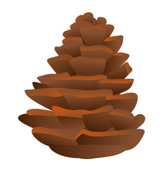 Firtree pine cone icon cartoon style vector