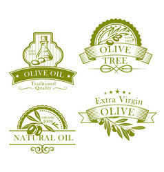 olive oil product template icons set vector image