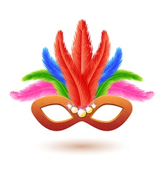 Orange Carnival Mask with Feathers vector image