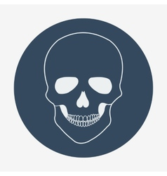 Single flat skull icon vector image