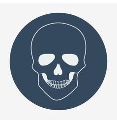 Single flat skull icon vector image