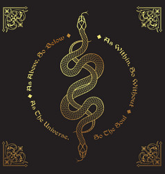 Two gold serpents intertwined inscription vector