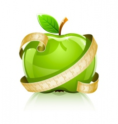 apple with measuring line vector image vector image