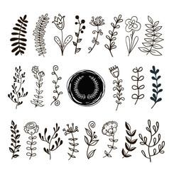 plants doodle vector image