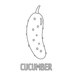 cucumber icon outline style vector image vector image