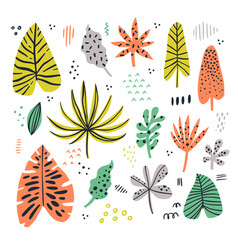 Exotic leaves hand drawn flat set vector