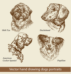 set hand drawing dogs vector image