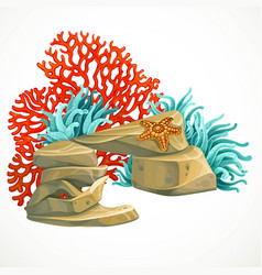 stone arch with sea anemones red corals marine vector image