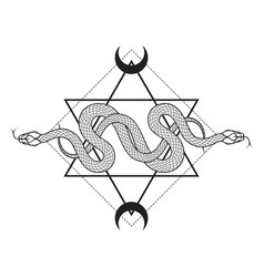 Two serpents over six pointed star line art vector