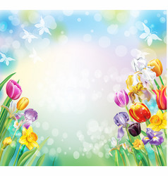 Background with multicolor spring flowers vector