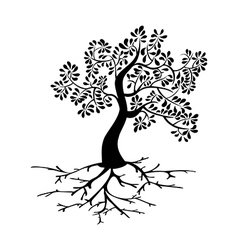 Black tree roots silhouette vector