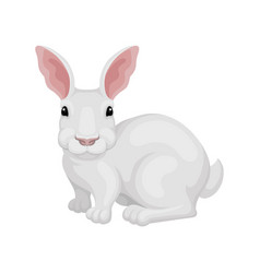 flat icon of white rabbit side view vector image