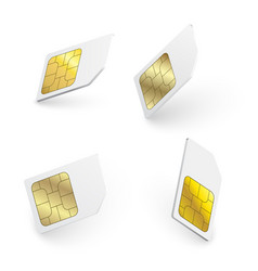 realistic sim cards vector image