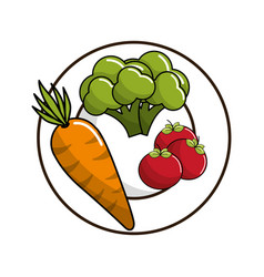 Carrot broccoli and tomatoes inside of plate vector