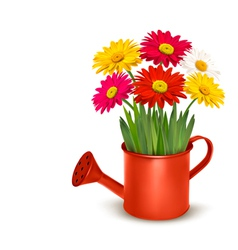 Fresh summer flowers in orange watering can vector image vector image