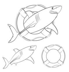 set of shark in the lifeline vector image vector image