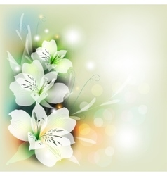 Bouquet lily in color vector image