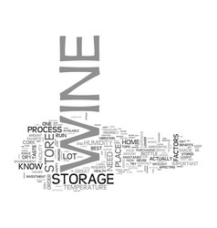 Best wine storage practices text word cloud vector