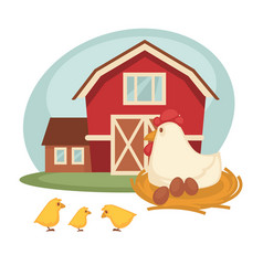 Farm barn or farmer household chicken hatch vector
