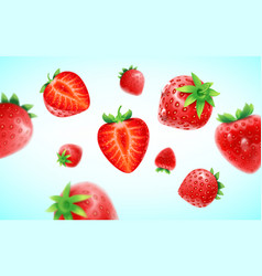 strawberry set detailed realistic ripe fresh vector image