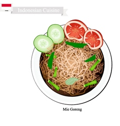 Mie Goreng or Traditional Indonesian Fried Noodles vector image vector image