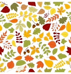 Autumn background with leaves seamless pattern vector