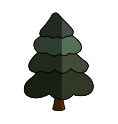 beautiful tree isolated vector image vector image