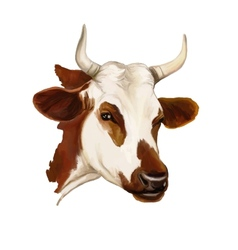 Cow hand drawn painted vector